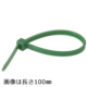 ロックタイ 300mm 50本入 緑 [品番]04-3165