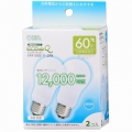 電球形蛍光灯 エコデンキュウ A形 E26 60形相当 昼光色 2個入 [品番]06-0260