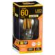 LED電球 フィラメント E26 60W相当 調光器対応 [品番]06-3483