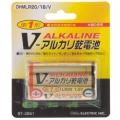 アルカリ乾電池 Vシリーズ 単1形×1本 [品番]07-2861