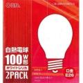 ホワイトシリカ電球 100W形 2個パック [品番]06-2585