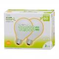電球形蛍光灯 ボール形 E26 60形相当 電球色 エコデンキュウ 2個入 [品番]04-3288