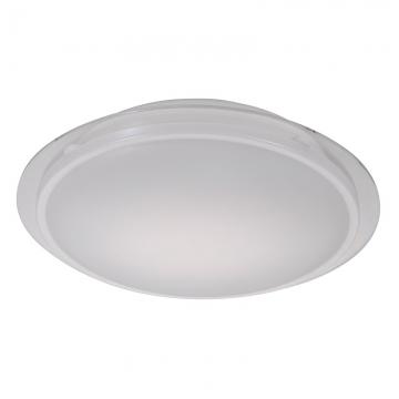 LEDシーリングNEX 100形相当 昼白色 [品番]07-6394
