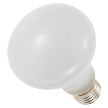 レフ球ライト 100W/E26 [品番]07-4754