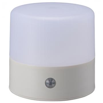 LEDセンサーマルチライト 人感・明暗 白色LED [品番]07-8260