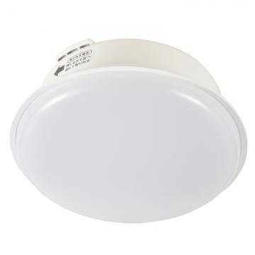 LEDミニシーリングライト 40形相当 昼白色 [品番]06-0702