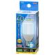 LED電球 T形 E17 40形相当 昼光色 [品番]06-3736