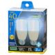 LED電球 T形 E26 40形相当 昼光色 2個入 [品番]06-3746