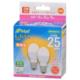 LED電球 小形 E17 25形相当 電球色 2個入 [品番]06-4319
