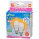 LED電球 小形 E17 60形相当 電球色 2個入 [品番]06-4323