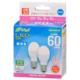 LED電球 小形 E17 60形相当 昼光色 2個入 [品番]06-4324