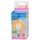 LED電球 小形 E17 60形相当 電球色 [品番]06-4335