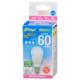 LED電球 小形 E17 60形相当 昼光色 [品番]06-4336