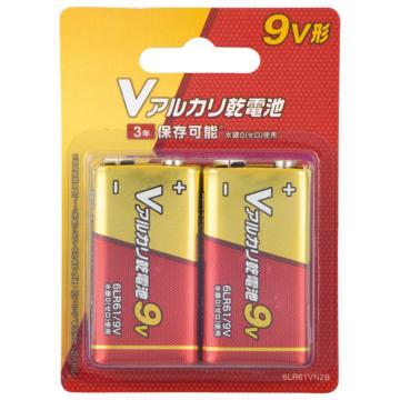 Vアルカリ乾電池 9V形 2本パック [品番]08-4046