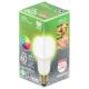 LED電球 E26 60形相当 昼白色 [品番]06-3862